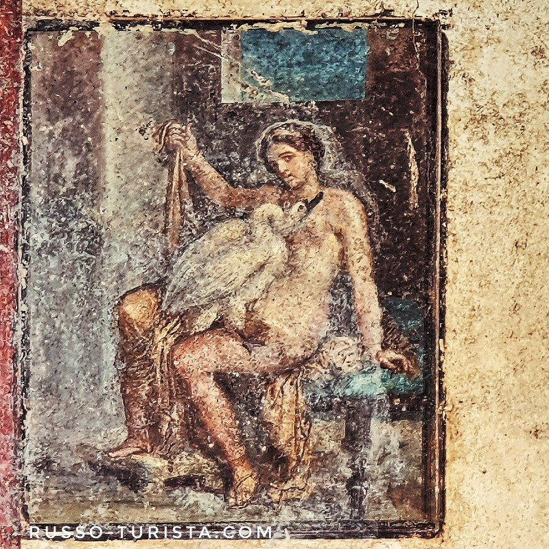 pompei-freska-leda-i-lebed-zevs